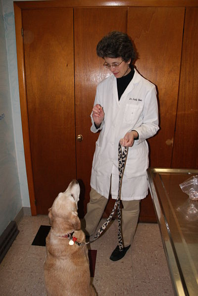 Dr. Sally Foote with Butterscotch - Okaw Vet Clinic - Tuscola, IL